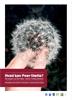Hvad kan Peer-Støtte? Folder om lønnet og frivillig peer-støtte