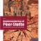 PIXI Implementering af Peer-støtte - Erfaringer fra Region Hovedstaden